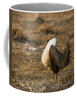 Displaying Adult Male Sage Grouse Coffee Mug