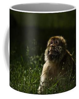 Distant Thoughts Coffee Mug