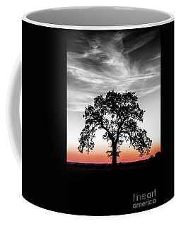 Coffee Mug featuring the photograph Distinctly by Betty LaRue
