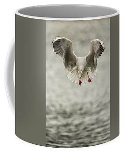 Dive  Coffee Mug