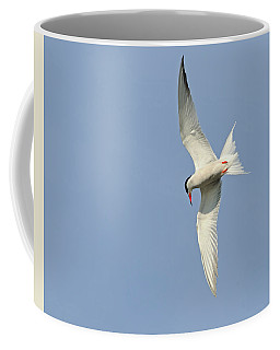 Dive Coffee Mug by Tony Beck