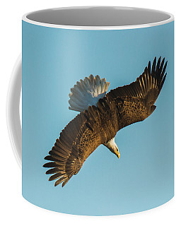 Diver Down Top Side Coffee Mug