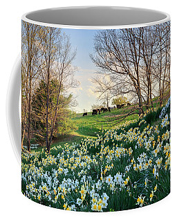 Coffee Mug featuring the photograph Divine Bovines by Bill Wakeley
