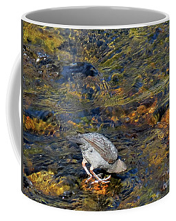 Coffee Mug featuring the photograph Diving For Food by Ausra Huntington nee Paulauskaite