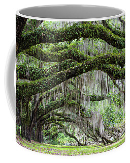 Dixie's Ancient Oaks Coffee Mug
