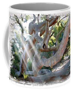 Do-00044 Mount Ettalong Coffee Mug by Digital Oil