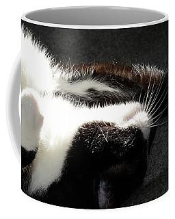 Do Not Disturbe  Coffee Mug