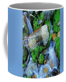 Do You Share A Love For Streams? Coffee Mug by Sean Sarsfield
