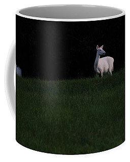 Doe, A Deer Coffee Mug
