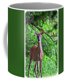Doe And Cardinal Coffee Mug