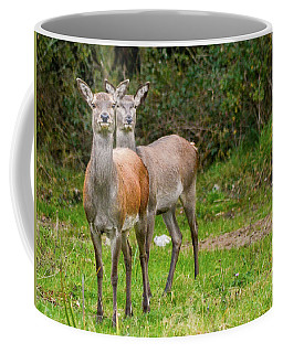 Doe Eyed Coffee Mug