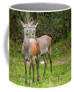 Doe Eyed Coffee Mug