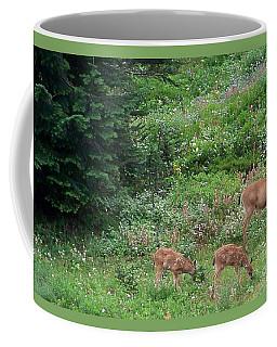 Doe And Twin Fawns Coffee Mug