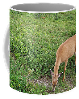 Coffee Mug featuring the photograph Doe by Charles Robinson