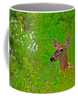 Doe In Springtime Coffee Mug