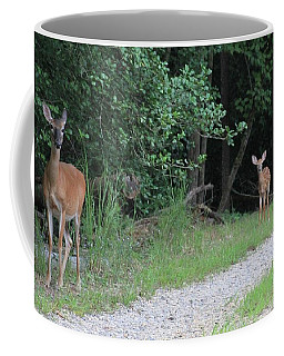 Doe With Twins Coffee Mug