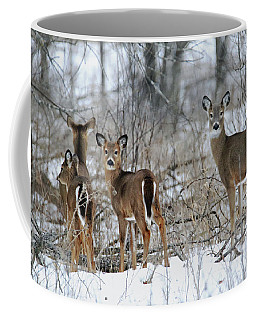 Does And Fawns Coffee Mug by Brook Burling