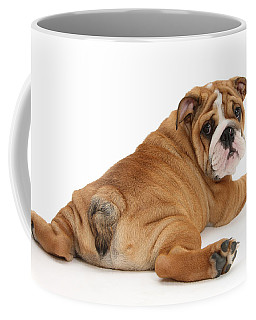 Does My Bum Look Big In This? Coffee Mug