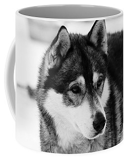 Dog - Monochrome 3 Coffee Mug