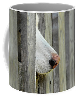 Dog Nose Coffee Mug