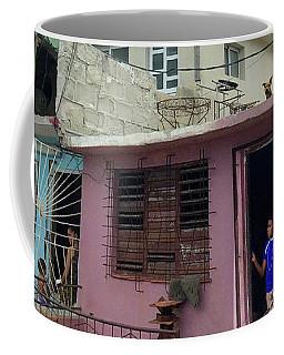 Dog On A Hot Cuban Roof Coffee Mug by Beth Saffer