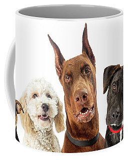 Dogs Of Various Sizes Close-up Web Banner Coffee Mug