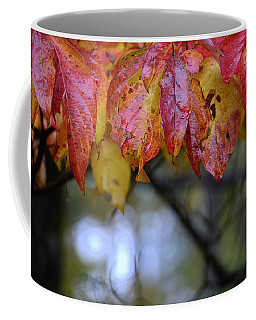 Dogwood 1 Coffee Mug