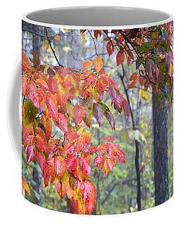 Dogwood 2 Coffee Mug