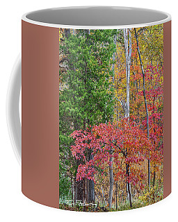 Dogwood And Cedar Coffee Mug
