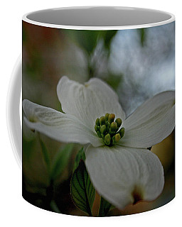 Coffee Mug featuring the photograph Dogwood Blossom by Karen Harrison