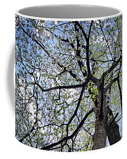 Dogwood Canopy Coffee Mug