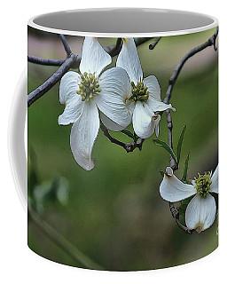 Dogwood Coffee Mug