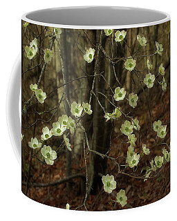 Dogwoods In The Spring Coffee Mug by Mike Eingle