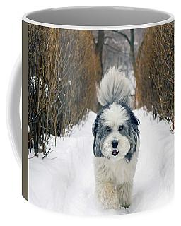 Doing The Dog Walk Coffee Mug by Keith Armstrong