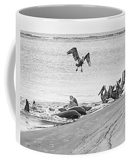Dolphin And Pelican Party Coffee Mug