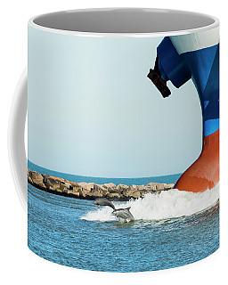 Dolphin Guides Coffee Mug
