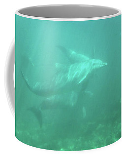 Coffee Mug featuring the photograph Dolphin Swim by Francesca Mackenney