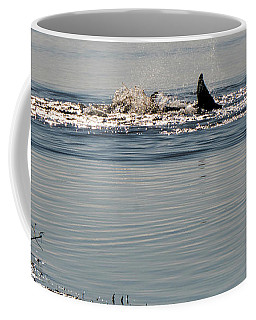 Dolphin Tail In The Water Coffee Mug