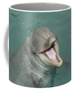 Dolphin Coffee Mug by Sean M