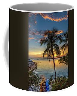 Dolphins In San Carlos Bay Coffee Mug