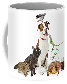 Domestic Pets Group Together With Copy Space Coffee Mug