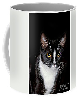 Coffee Mug featuring the photograph Domino by Maria Urso