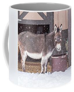 Donkey Watching It Snow Coffee Mug