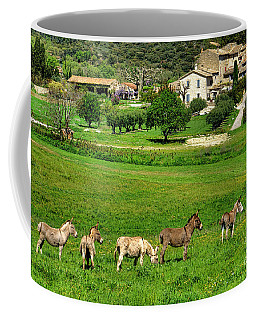 Coffee Mug featuring the photograph Donkeys In Provence by Olivier Le Queinec