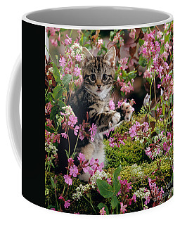 Don't Pick The Flowers Coffee Mug
