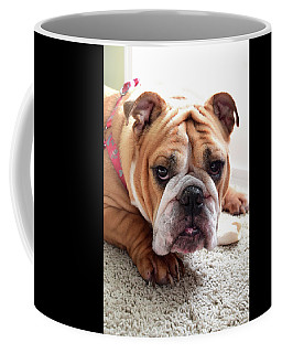 Don't Touch My Bone Coffee Mug