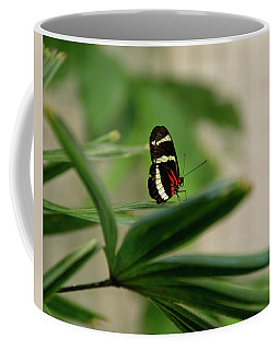 Doris Longwing Butterfly Coffee Mug