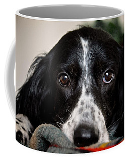English Setter Eyes Coffee Mug