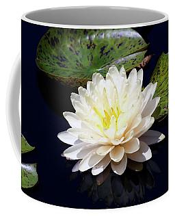 Dotty White Lotus And Lily Pads 0030 Dlw_h_2 Coffee Mug