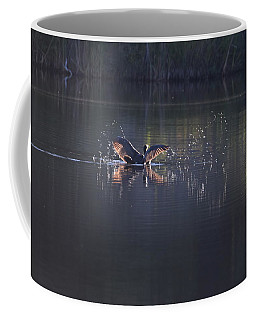 Coffee Mug featuring the photograph Double Crested Cormorant by Margarethe Binkley